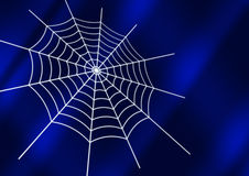 Free Spider Web Royalty Free Stock Photo - 2007965