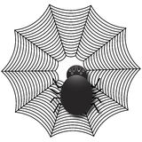 Spider on a Web. Cute spider on a web Vector Illustration