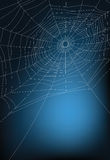 Spider web. Illustration, for background Royalty Free Stock Photos