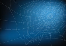 Spider web. Illustration, for background Stock Photos