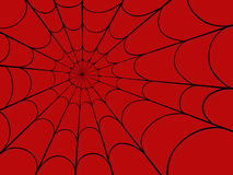 Spider web Royalty Free Stock Photo