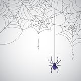 Spider Web. Illustration of spider web pattern on abstract background Royalty Free Stock Images