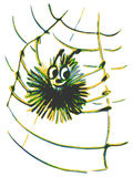 Spider on a web. Hand drawn, cartoon, sketch illustration of spider on a web Royalty Free Stock Images