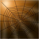 Spider web. Illustration of a spider web dangling in the sun Royalty Free Stock Images