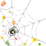 Spider on a Web in Autumn. Background with Leafs and Spider on a Web in Autumn Stock Photos