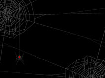 Spider Web Background. Creepy background with two spider's webs. Elements placed on separate layers for ease of use Royalty Free Stock Photography