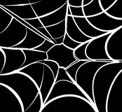 Spider Web background Stock Photo