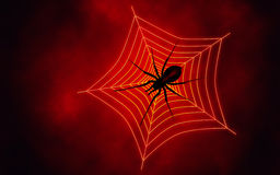 Spider web with big spider Royalty Free Stock Image