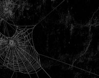 Spider web black background Royalty Free Stock Photos