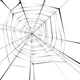 Spider web. Black spider web over white background Stock Photos