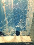 Spider web. A spider web with blue background royalty free stock photography