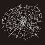 Spider web or broken glass. On black background vector illustration