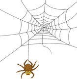Spider web cartoon Royalty Free Stock Image
