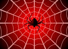 Free Spider Web. Cobweb Trap, Gossamer Halloween Graphic Silhouette. Spider Man Funny Spooky Party Net Texture, Wallpaper Royalty Free Stock Photo - 160398525