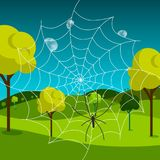 Spider Web with Dew and Meadow. On Background stock illustration