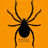Spider on web for Halloween Background Royalty Free Stock Photo