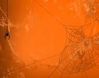 Spider web halloween background Royalty Free Stock Images