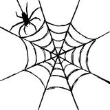 Spider and web. Hand draw by pencil . use for Halloween day Royalty Free Stock Image