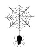 Spider web. An illustration of a web & spider Royalty Free Stock Image
