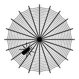 Spider on a web. Illustration Royalty Free Stock Images