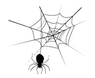 Spider web. Illustration of a spider web and spider Royalty Free Stock Photo