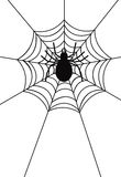 Spider web. Illustration of a spider web and spider Stock Images