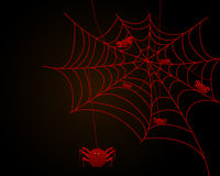 Spider web. Illustration of a spider web and spider Royalty Free Stock Photos