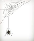 Spider web. Illustration on white background Stock Image