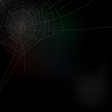 Spider web isolated on dark background,  Stock Photos