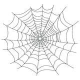 Spider web isolated on white,  Royalty Free Stock Images