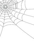 Spider web isolated on white,  Stock Images
