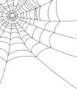 Spider web isolated on white,. Illustration Stock Images