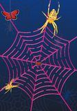 Spider web labyrinth Stock Images