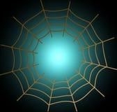 Spider Web, Light, Symmetry, Line Stock Photo