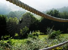 Spider web on the mountain. Spider web with raindrops on a wooden fence, in the background landscape of mountains, meadows and green valleys Royalty Free Stock Images