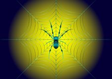 Spider on the web royalty free illustration