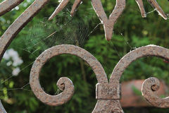 Spider web on rusted railings Stock Photography
