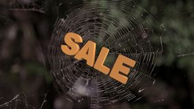 Spider web sale abstract stock video