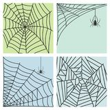 Spider web silhouette arachnid fear graphic flat scary animal design nature insect danger horror halloween vector cards. Stock Photo