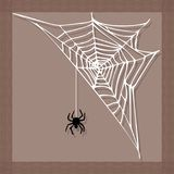 Spider web silhouette arachnid fear graphic flat scary animal design nature insect danger horror halloween vector icon. Stock Photos