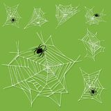 Spider web silhouette arachnid fear graphic flat scary animal design nature   Stock Images