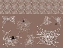 Spider web silhouette arachnid fear graphic flat scary animal design nature insect danger horror halloween vector icon. Royalty Free Stock Photography