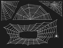 Spider web silhouette arachnid fear graphic flat scary animal design nature insect danger horror vector icon. Royalty Free Stock Images