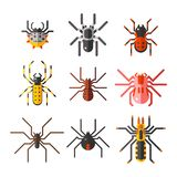 Spider web silhouette arachnid fear graphic flat scary animal design nature insect danger horror halloween vector icon. Royalty Free Stock Images
