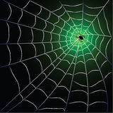 Spider web with spider. Over blackgreen background design stock illustration