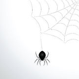Spider web and spider. Vector illustration stock illustration