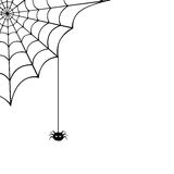 Spider web and spider. Vector illustration. Royalty Free Stock Image