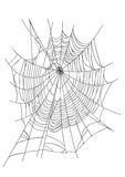 Spider Web. Spiderweb isolated on white background. Available in vector EPS format Royalty Free Stock Photos