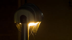 Spider web on the street lamp - Trap Concept Stock Image
