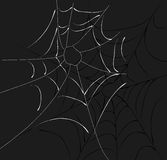 Spider Web Two Webs. A spider web illustration on dark background vector illustration